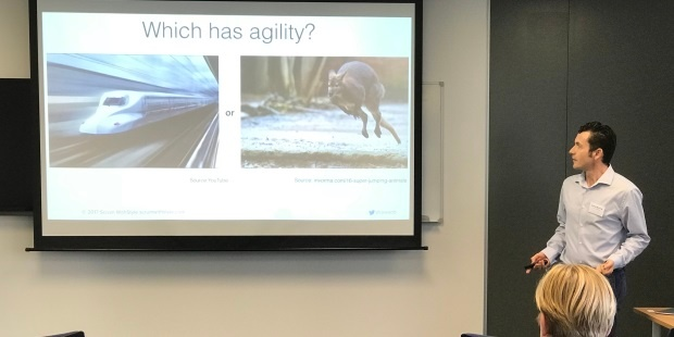 high speed train less agile than a kangaroo