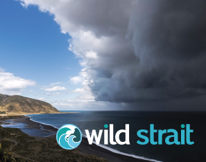 Equinox IT Consultancy launches Wild Strait - The Software Performance Company